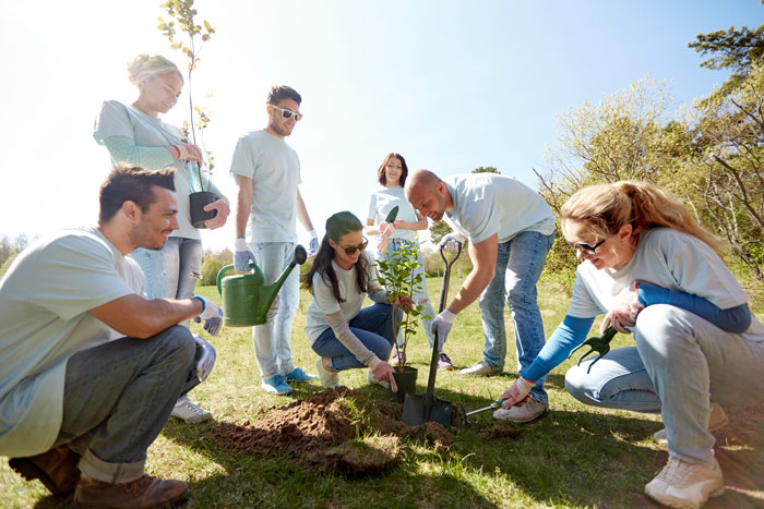 group of volunteers planting a tree - giving back